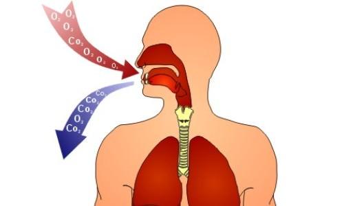 леденцы от запаха изо рта